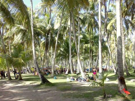 playa medina 4